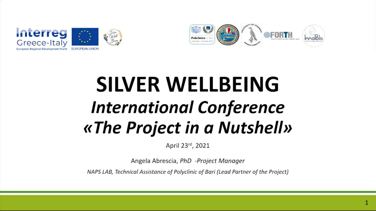 The Silver Wellbeing Project in a Nutshell